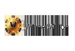 Winner Million Casino Logo